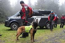 Výcvik budoucích služebních psů Horské služby v Jeseníkách.