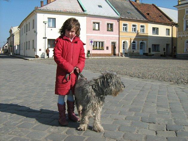 Nebezpečí útoku zuřivého psa se snaží minimalizovat ve Vidnavě na Jesenicku vyhláškou zakazující volné pobíhání psů.