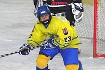 Vladimír Cink na archivním snímku
