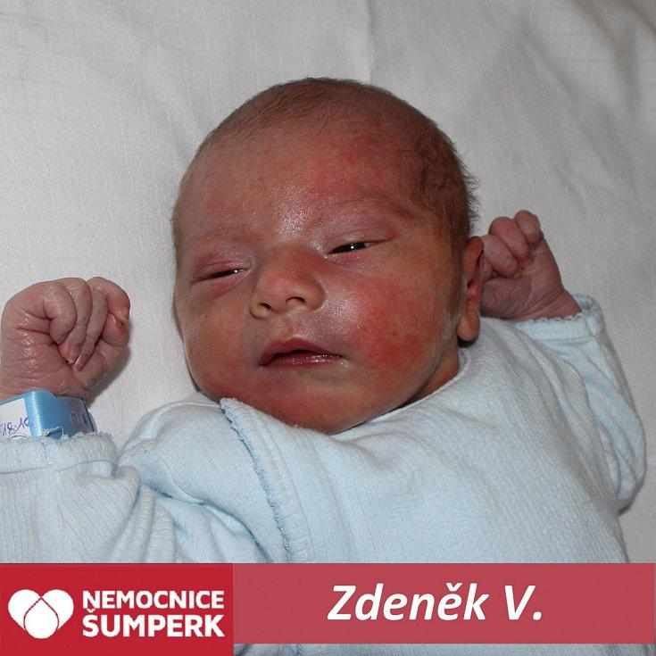 Zdeněk V., Hanušovice