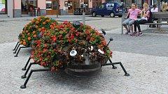 Výzdoba k 750 letům města Jeseník - květinové berušky.