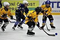 V Uničově proběhne Týden hokeje