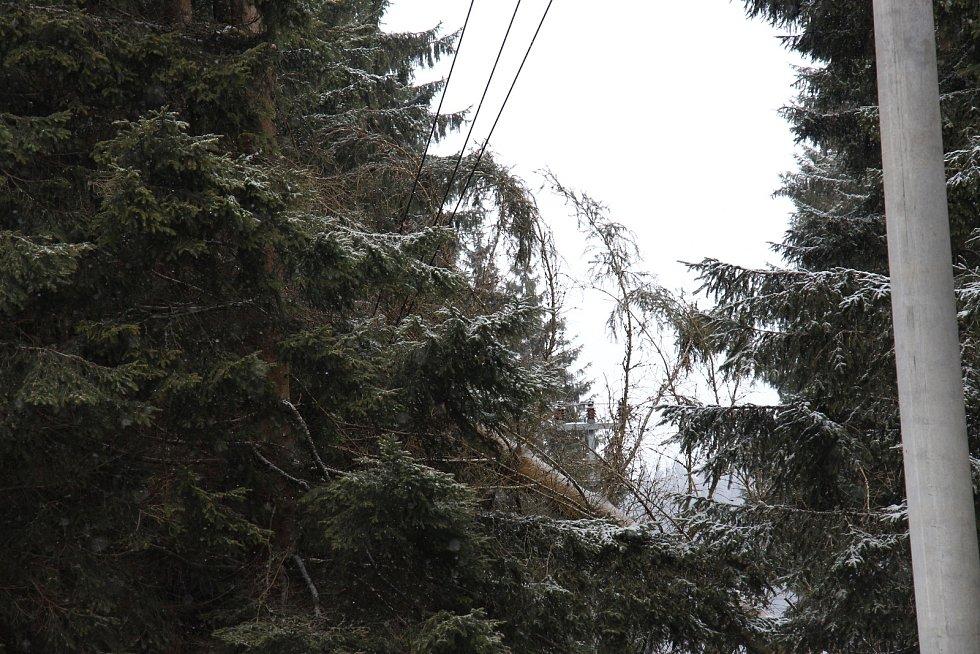 Silný vítr vyvrátil na Skřítku desítky stromů