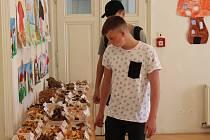 Výstava hub v šumperském muzeu - září 2019