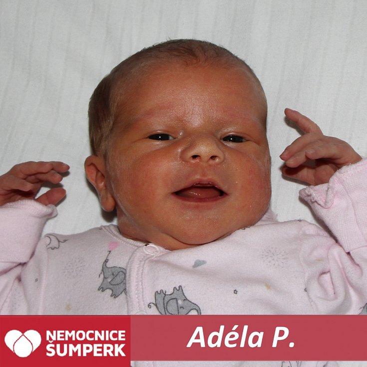 Adéla P., Sudkov