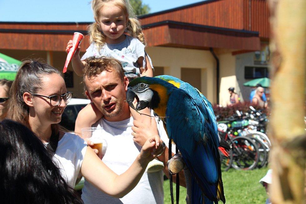 Papouščí den 2020 na přehradě Krásné u Šumperka.