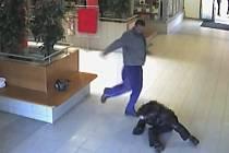Takhle násilník zmlátil muže v jesenickém Alcronu.