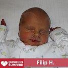 Filip H., Štíty