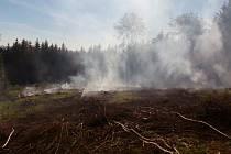 Požár lesa u Vikýřovic.