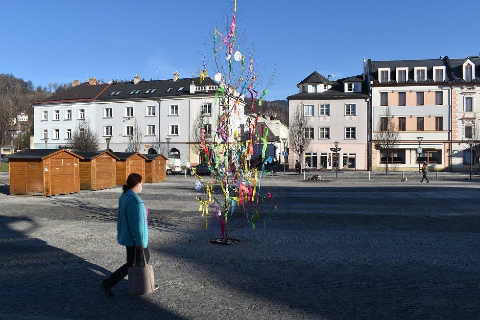 Kraslicovník na náměstí v Jeseníku.