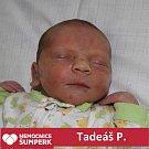 Tadeáš P., Moravská Třebová