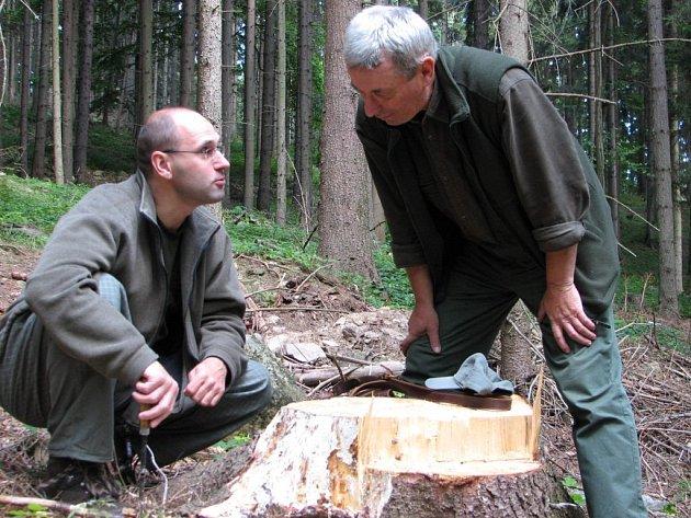 Jiří Pňáček (vlevo) a Jiří Lisník ukazují po odloupnutí kůry podhoubí ničivé václavky.