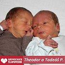 Theodor a Tadeáš P., Kosov