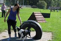 V Loučné nad Desnou se 1. října konal šestý ročník soutěže Loučenská psí superstar