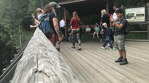 Rejvízpatří mezi nejvyhledávanější turistické cíle v Jeseníkách. Velké mechové jezírko o letošních prázdninách přitahuje davy návštěvníků. Poláků však ubylo.  19. července 2020