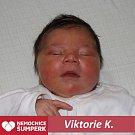 Viktorie K.,Šumperk