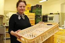 Olga Gřundělová vyrábí v Branné a Starém Městě Staroměstské máslové trubičky.