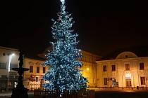 Vánoční strom v Mohelnici