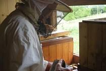 Odběr rámečků z medníku.