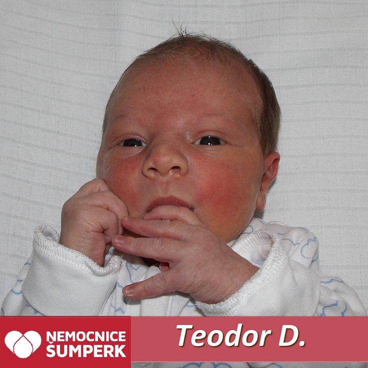 Teodor D., Šumperk