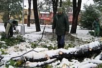 Pracovníci technických služeb odstraňují v Jeseníku spadlé stromy