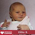 Eliška B., Drozdov