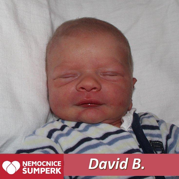 David B., Postřelmov