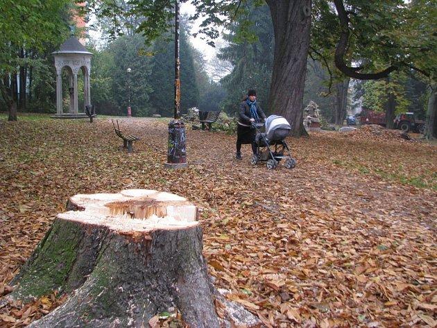 V Jiráskových sadech v Šumperku začala obnova zeleně.