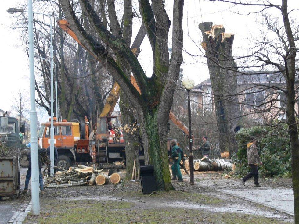 Topoly ze šumperské ulice 17. listopadu padly k zemi