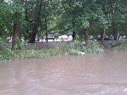 Tábor Duha Křišťál Lutín nedaleko Drozdovské Pily na Zábřežsku zatopila v neděli 3. srpna voda z řeky Březné.
