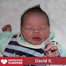 David K., Staré Město