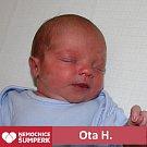 Ota H., Šumperk