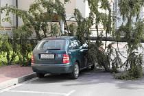 Nedělní vichr vyvrátil na ulici v Jeseníku smrk a ten spadl přímo na zaparkované policejní vozidlo.