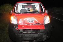 Auto srazilo u Loštic daňka, ten nepřežil
