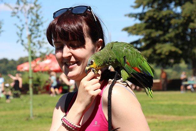 Papouščí den 2020na přehradě Krásné uŠumperka.