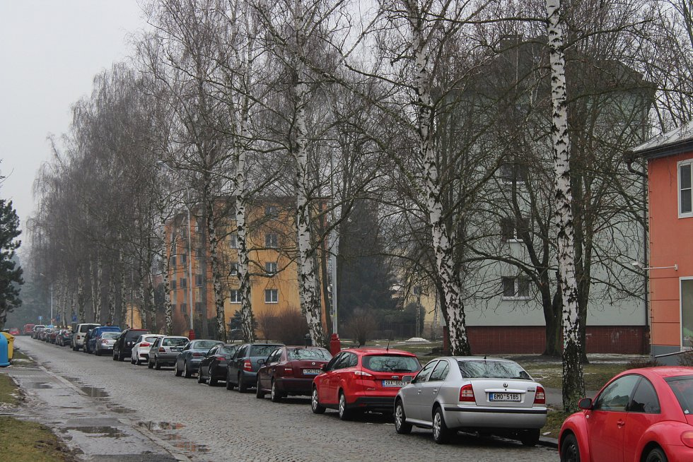 Ulice 17. listopadu v Zábřehu s březovou alejí