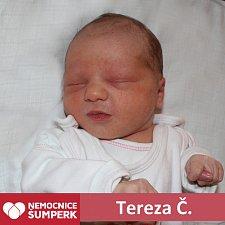 Tereza Čechová 25. 4. 2018 Brníčko