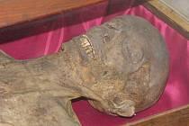 Hrobka vladyckého roku Bukůvků se pro návštěvníky otevřela v sobotu 26. května.