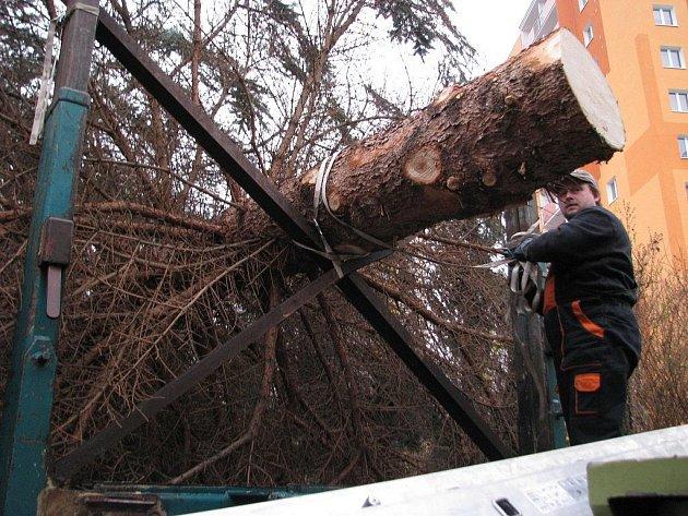 Příjezd a instalace vánočního stromu, který bude tradičně zdobit náměstí u šumperské radnice