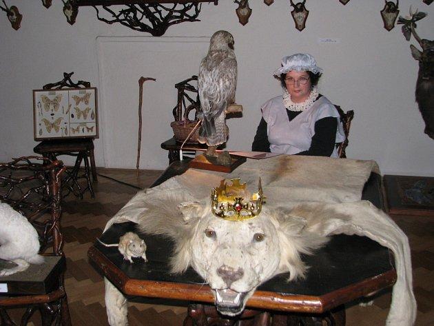 Průvodkyně v kostýmech pohádkových postav provázely v pátek 28 srpna večer návštěvníky expozicemi lovecko-lesnického muzea na zámku v Úsově.