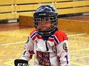 Týden hokeje v Šumperku, tentokrát bez ledu