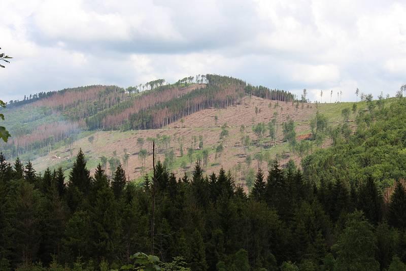Pohled na horu Větrná u Zlatých Hor.