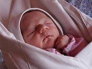 V Nemocnici v Karviné-Ráji byl ve středu slavnostně zprovozněn již 38. babybox v České republice