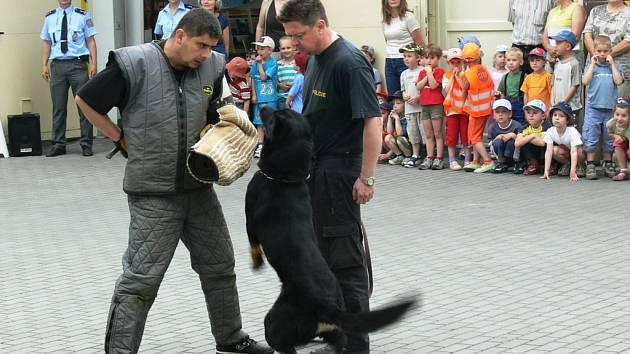 Policejní psovodi předvádějí svým německým kolegům a návštěvníkům Dnů otevřených dveří ukázku zásahu se služebním psem.