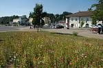 Květinová výzdoba v Zábřehu.