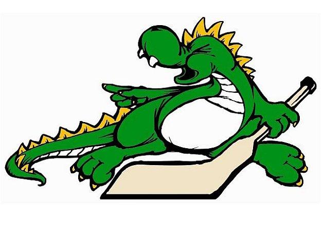 Logo šumperského hokeje