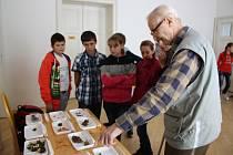 V šumperském muzeu začala výstava hub.
