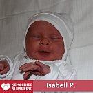 Isabell P., Libina