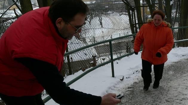 Dvanáct dvounožců a tři psi startovali v sobotu v Zábřehu v pátém ročníku Tříkrálového běhu do zámecké brány.