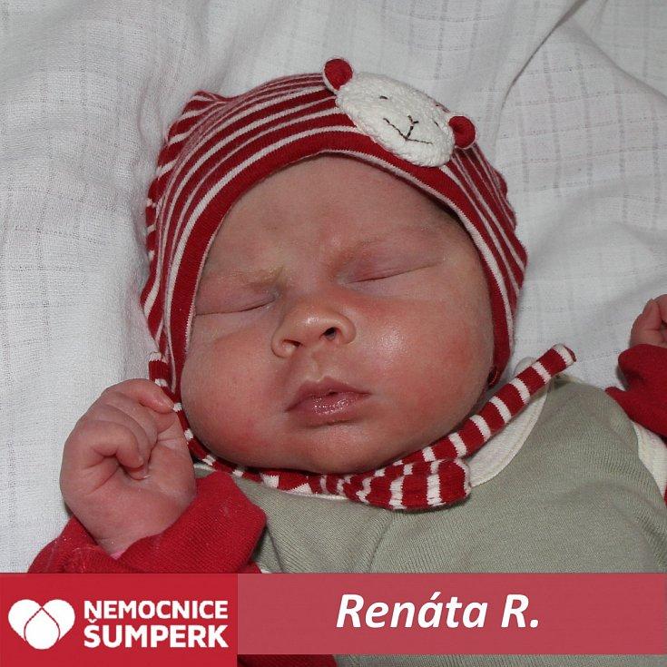 Renáta R., Klášterec